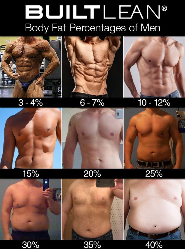 Body fat percentages of men