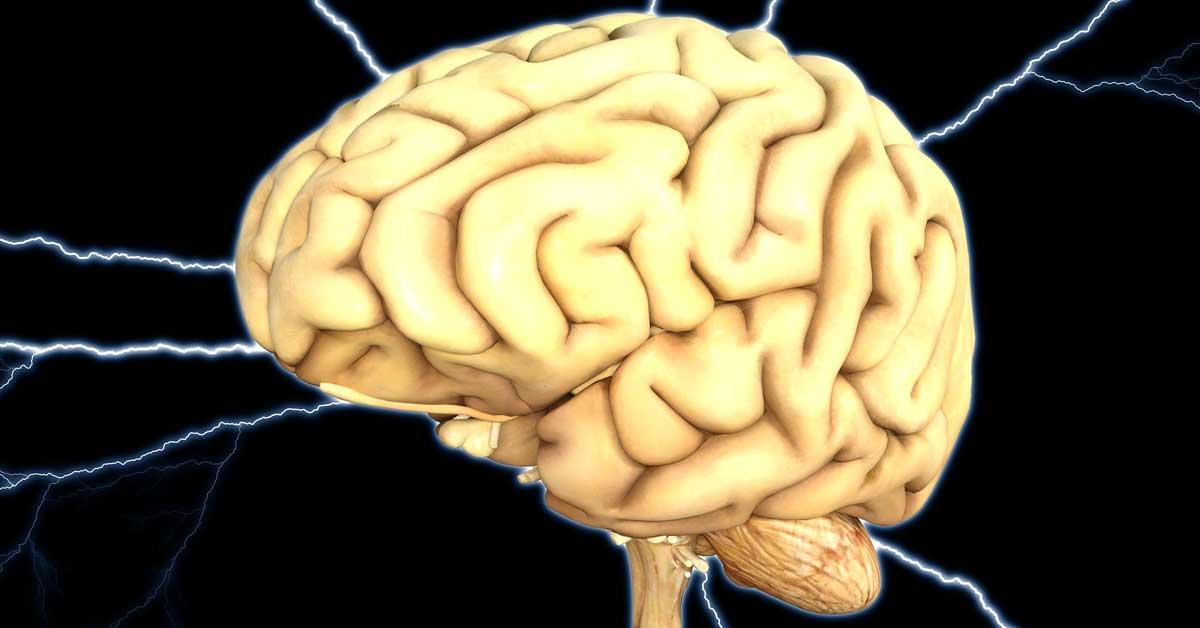 Brain Health Keto Diet