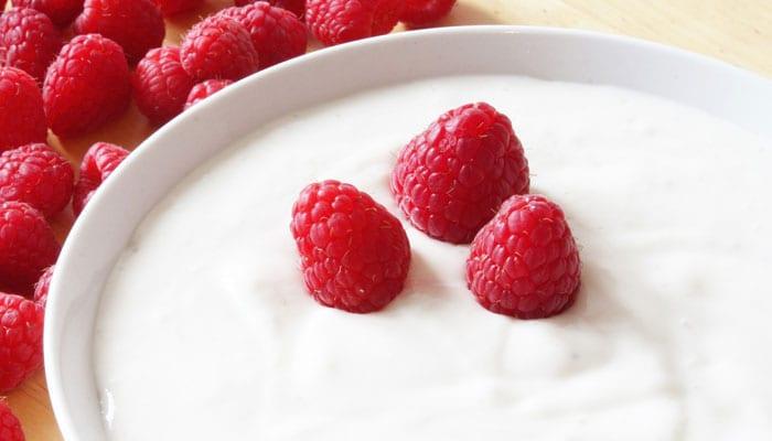 Keto Probiotics - Yogurt